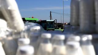 ΕΛΓΑ: Την Τρίτη οι αποζημιώσεις στους κτηνοτρόφους