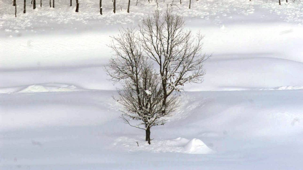 Έπεσαν τα πρώτα χιόνια σε Τρίκαλα και Καρδίτσα