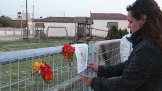 Περισσότερα από 20 σκυλιά νεκρά στο Βόλο - Σοκαρισμένοι οι ιδιοκτήτες