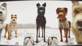 Βerlinale: πρεμιέρα με τα σκυλιά του Γουές Άντερσον - ποια Ελληνίδα μας εκπροσωπεί