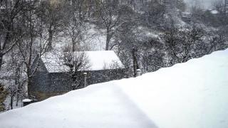Αίγιο: Νεκρή, θαμμένη στο χιόνι, βρέθηκε η 80χρονη που είχε εξαφανιστεί