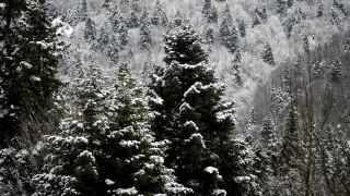 Καιρός Χριστούγεννα: Αναλυτικά η πρόγνωση για σήμερα