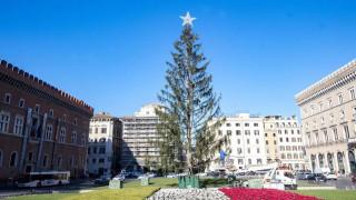 Στο μουσείο σύγχρονης Τέχνης το «γυμνό» χριστουγεννιάτικο δέντρο της Ρώμης (pics)