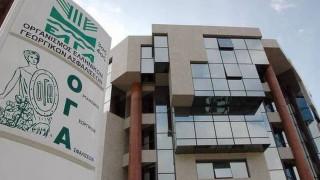 Οικογενειακά επιδόματα ΟΓΑ: Στις 15 Ιανουαρίου λήγει η προθεσμία υποβολής αιτήσεων Α21