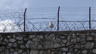 Εισαγγελική έρευνα για τον θάνατο κρατούμενου στον Κορυδαλλό