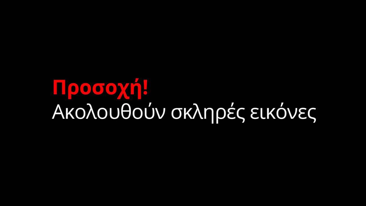 https://cdn.cnngreece.gr/media/news/2018/01/11/113070/photos/snapshot/skliresEikones.jpg