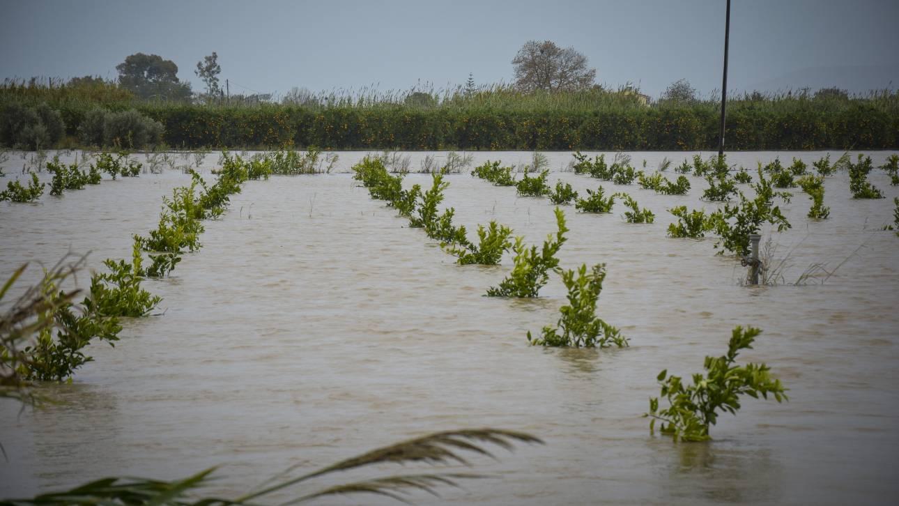 Προληπτική εκκένωση οικισμού στο δήμο Καρδίτσας λόγω της έντονης βροχόπτωσης (pics&vid)