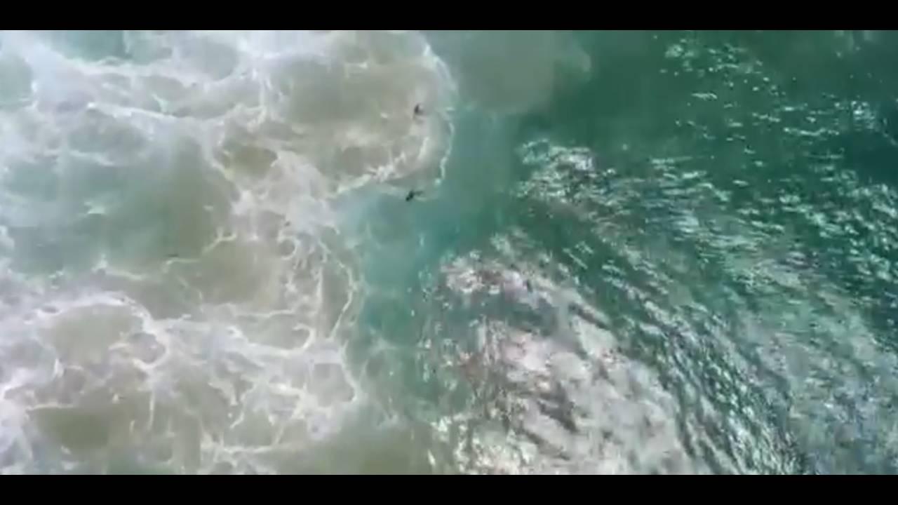 https://cdn.cnngreece.gr/media/news/2018/01/18/113948/photos/snapshot/ausswimmers.jpg