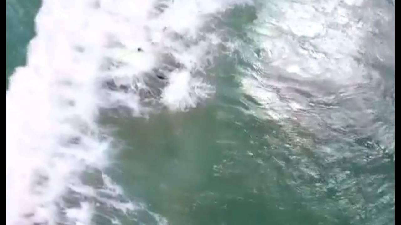 https://cdn.cnngreece.gr/media/news/2018/01/18/113948/photos/snapshot/ausswimmers2.jpg