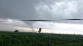 Ρεκόρ σιφώνων καταγράφτηκαν στην Ελλάδα το 2017