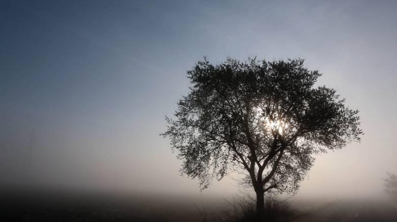 Αίθριος ο καιρός την Κυριακή με μικρή άνοδο της θερμοκρασίας