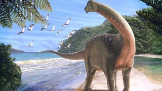 Αίγυπτος: Ανακαλύφθηκε σπάνιο απολίθωμα δεινόσαυρου που είχε μήκος λεωφορείου