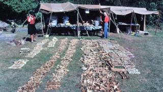 Σπάνια ανακάλυψη: Μαζικός τάφος μπορεί να ανήκει στον Μεγάλο Στρατό των Βίκινγκ