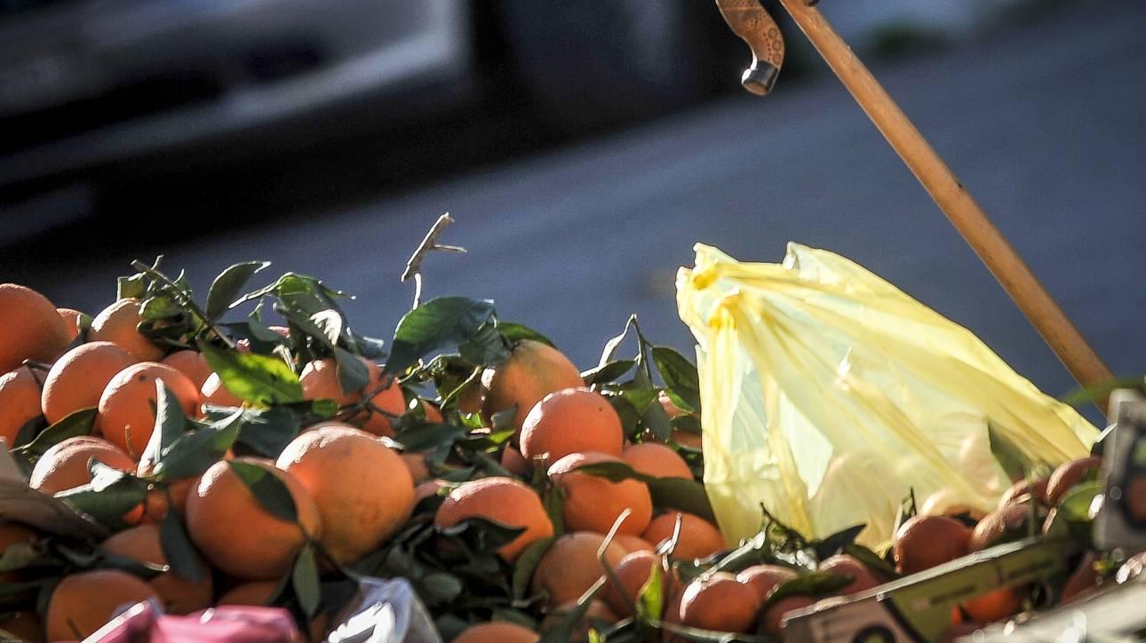 Πλαστικές σακούλες: Μεγάλη μείωση χρήσης τους διαπιστώνει το ΙΕΛΚΑ