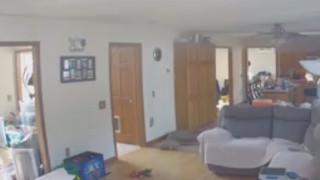 Κατά λάθος εμπρηστής: Λιχούδης σκύλος βάζει φωτιά σε σπίτι