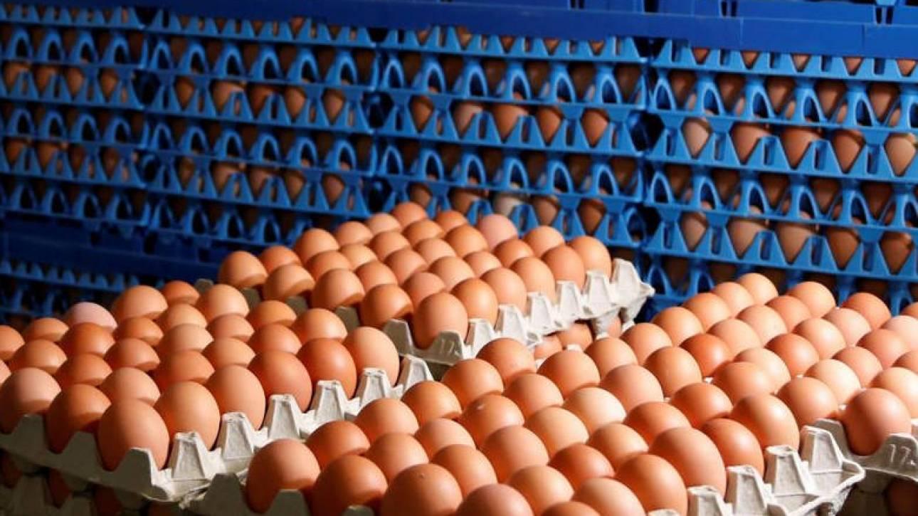 Χειμερινοί Ολυμπιακοί Αγώνες 2018: Παράγγειλαν 15.000 αυγά… κατά λάθος