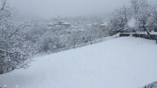 «Σαρώνει» η «Ιοκάστη»: Λευκό τοπίο στα ορεινά της Ηπείρου