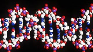 Έρευνα αποκαλύπτει: Μερικά γονίδια συνεχίζουν να λειτουργούν και μετά το θάνατο