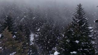 Σώος βρέθηκε νεαρός που εξαφανίστηκε στο χιονοδρομικό κέντρο Βασιλίτσας