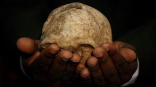 Νέα επίμαχη θεωρία υποστηρίζει πως ο Homo Erectus εφηύρε τον λόγο