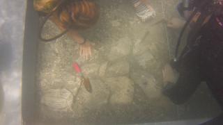 Νέα αρχαιολογικά ευρήματα στην Αργολίδα
