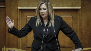 Σύσταση διακομματικής επιτροπής για την πολιτική φαρμάκου προτείνει η Φ. Γεννηματά