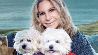 Μπάρμπρα Στρέιζαντ: κλωνοποίησε την σκυλίτσα της δύο φορές & εξοργίζει το Twitter