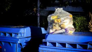«Μάστιγα» η σπατάλη τροφίμων: 100 κιλά φαγητό πετά στα σκουπίδια κάθε Έλληνας ετησίως
