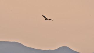 Αφρικανική σκόνη θα σκεπάσει την Κρήτη