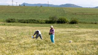 ΕΛΓΑ: Αύριο ξεκινά η καταβολή αποζημιώσεων αγροτών και κτηνοτρόφων