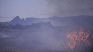Μαίνεται η πυρκαγιά στον Αυλώνα