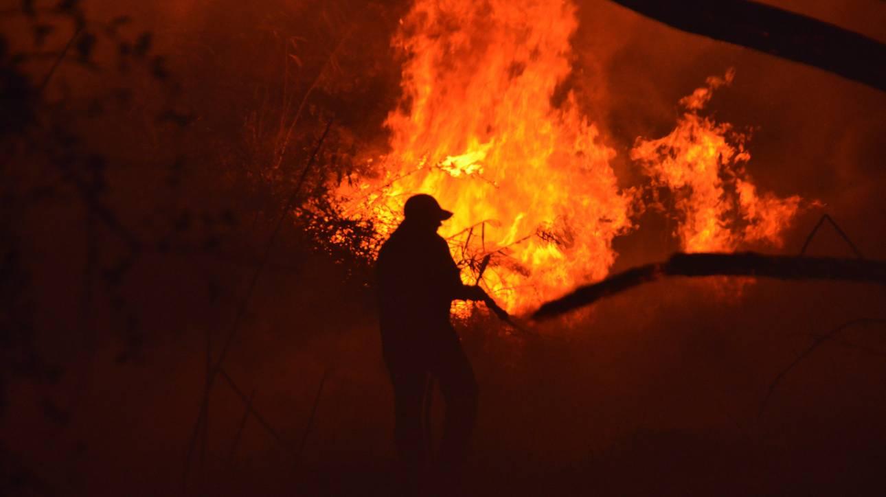 Μάχη με τις φλόγες σε τέσσερα μέτωπα δίνει η Πυροσβεστική
