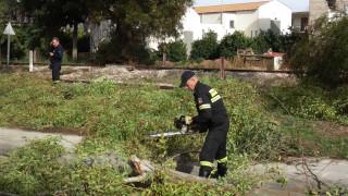 Σοβαρές υλικές ζημιές λόγω των ισχυρών ανέμων στα Γρεβενά