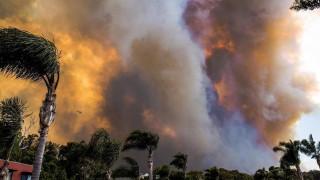 Πυρκαγιά στην Αυστραλία: Στάχτη δεκάδες σπίτια, στις παραλίες κατέφυγαν οι κάτοικοι