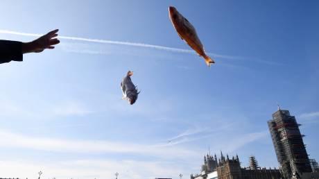Υποστηρικτές του Brexit πέταξαν… ψάρια στον Τάμεση