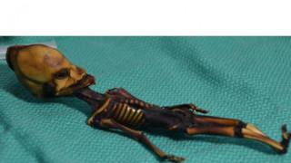 Λύθηκε το μυστήριο του «εξωγήινου» σκελετού