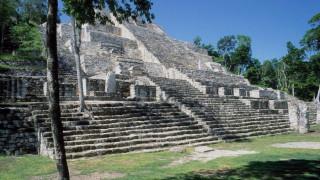 «Φως» στα μυστικά των Μάγια: Εξέτρεφαν σκύλους για φαγητό
