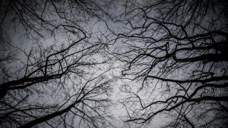 Καιρός: Βροχές, καταιγίδες και σκόνη τη Δευτέρα