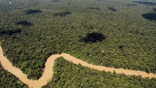 Η ιστορία του Αμαζονίου ξαναγράφεται: Ανακαλύφθηκαν χωριά της προκολομβιανής περιόδου