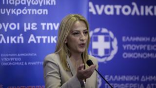 Δούρου: Διαμορφώνουμε τις προϋποθέσεις για ανοικτή οικονομία, χωρίς γραφειοκρατία
