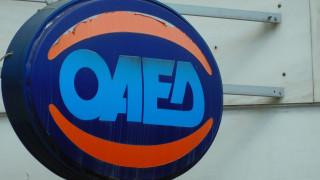ΟΑΕΔ: Πότε ξεκινά η υποβολή αιτήσεων για τις παιδικές κατασκηνώσεις