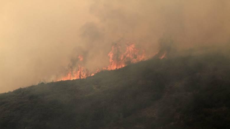 Σε εξέλιξη πυρκαγιές σε Ηλεία και Αρκαδία