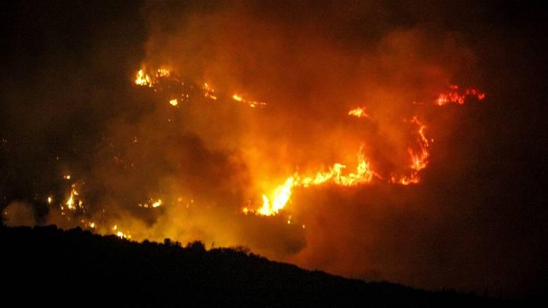 Ολονύκτια η μάχη με τις φλόγες στην Ηλεία