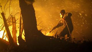 Πυρκαγιά Ηλεία: Βελτιώθηκε η κατάσταση στη Φρίξα - Δεν υπάρχει ενεργό μέτωπο