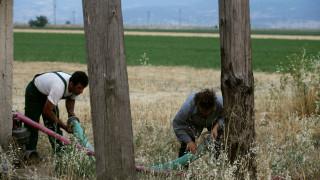 Πότε θα ενεργοποιηθεί η εφαρμογή για τη ρύθμιση οφειλών των αγροτών