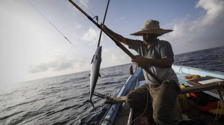 Γιατί οι Κενυάτες τρώνε ψάρια από την Κίνα;