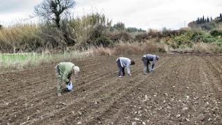 Θύματα απάτης ύψους... 600.000 ευρώ έπεσαν 22 αγρότες