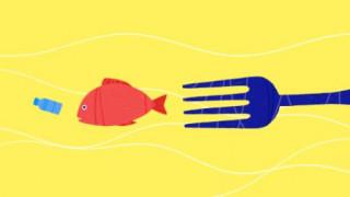 Ημέρα της Γης 2018: Εσείς πόσο πλαστικό τρώτε;