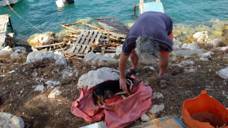 Τραγωδία στο Ναύπλιο: Γυναίκα πέθανε μετά από διαρροή υγραερίου