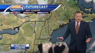 Απολαυστικό βίντεο: Τεράστιος σκύλος εισβάλει σε τηλεοπτικό δελτίο καιρού